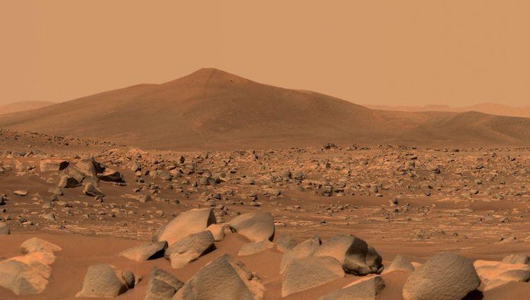 Mars, vanaf de grond gefotografeerd door de Amerikaanse marswagen Perseverance. Beeld AFP