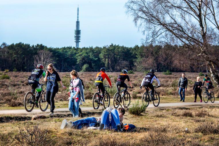 Genieten van een mooie lentedag op de hei nabij Hilversum.  Beeld Raymond Rutting  / de Volkskrant