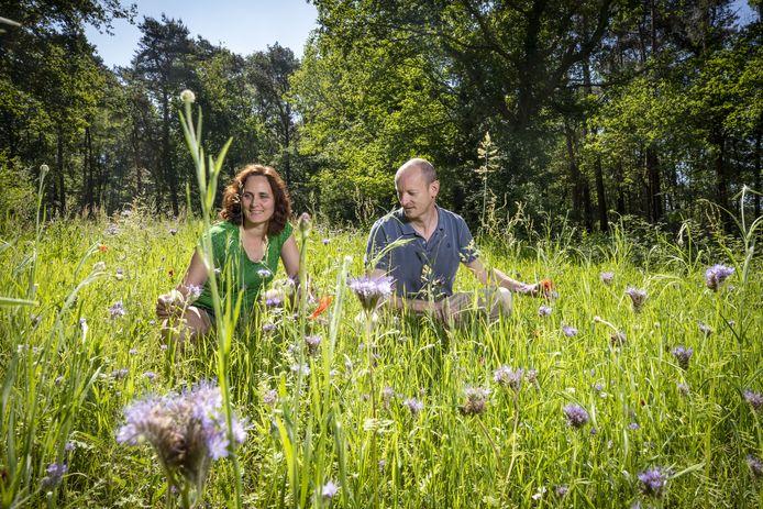 Carl en Mariël Eppink in de bloemenweide waar de wilde bloemen nu voor het eerst bloeien. Samen met het heideveld ontstaat hier een paradijsje voor bijen en andere insecten.