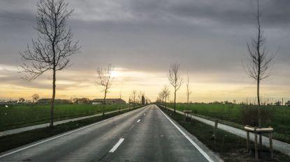 Op de Zuiderring worden betonplaten hersteld, er wordt een omleiding voorzien voor het autoverkeer