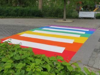 Haaltert heeft eerste regenboogzebrapad, nog vier andere op komst