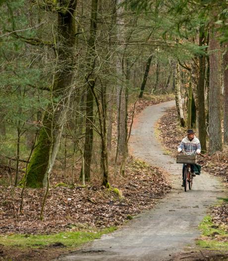 Wandelaars bedreigen draaihals en tapuit; verschillende bospaden op de Veluwe gaan dicht