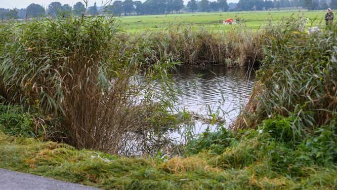 Auto rijdt door rietkraag het Apeldoorns Kanaal in: bestuurder weet zinkende auto op tijd te verlaten