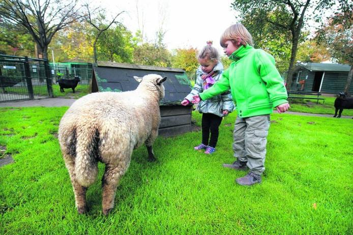Omwonenden zijn niet blij met de vestiging van een kinderboerderij aan de Lijsterweg in Nijverdal.