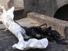 Kunstwerk vernield tijdens kunstroute Wal-Art in Hulst: 'Het is helemaal kapot'