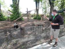 Pairi Daiza à nouveau élu meilleur zoo d'Europe