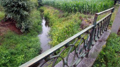Liefst 33 pesticiden in Zedelgemse beek: gemeente start meteen onderzoek na Greenpeace-studie