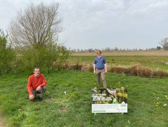 Wingene brengt droogte op drie locaties in kaart voor Curieuzeneuzen