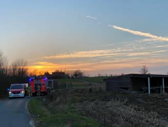 Afvalbrand achter paardenstal langs Kampenheuvel