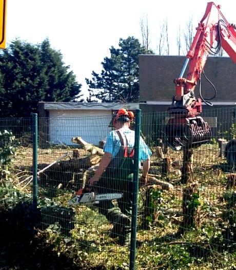 Dienstverlener Harthoorn vestigt zich in Sloestaalpand Vlissingen