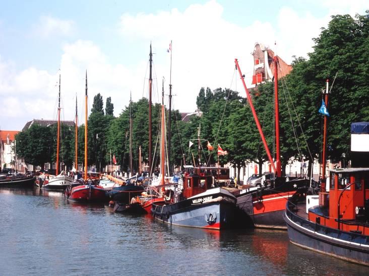 Bonje over bomen is van alle tijden, in Dordrecht is het nooit anders geweest