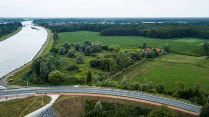 Geen windmolens in Viersel en Massenhoven: minister volgt negatief advies en keert geen vergunning uit