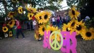 Nostalgie troef op festival Hoekstock