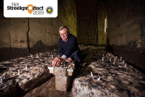 Jos Coenegrachts kweekt al jaren champignons in de mergelgrotten van Riemst.
