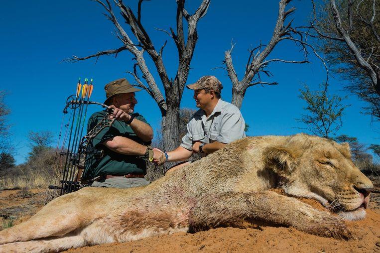 Steve Sibrel (met pijl en boog) bij zijn neergeschoten leeuw op de grens van Zuid-Afrika en Botswana.