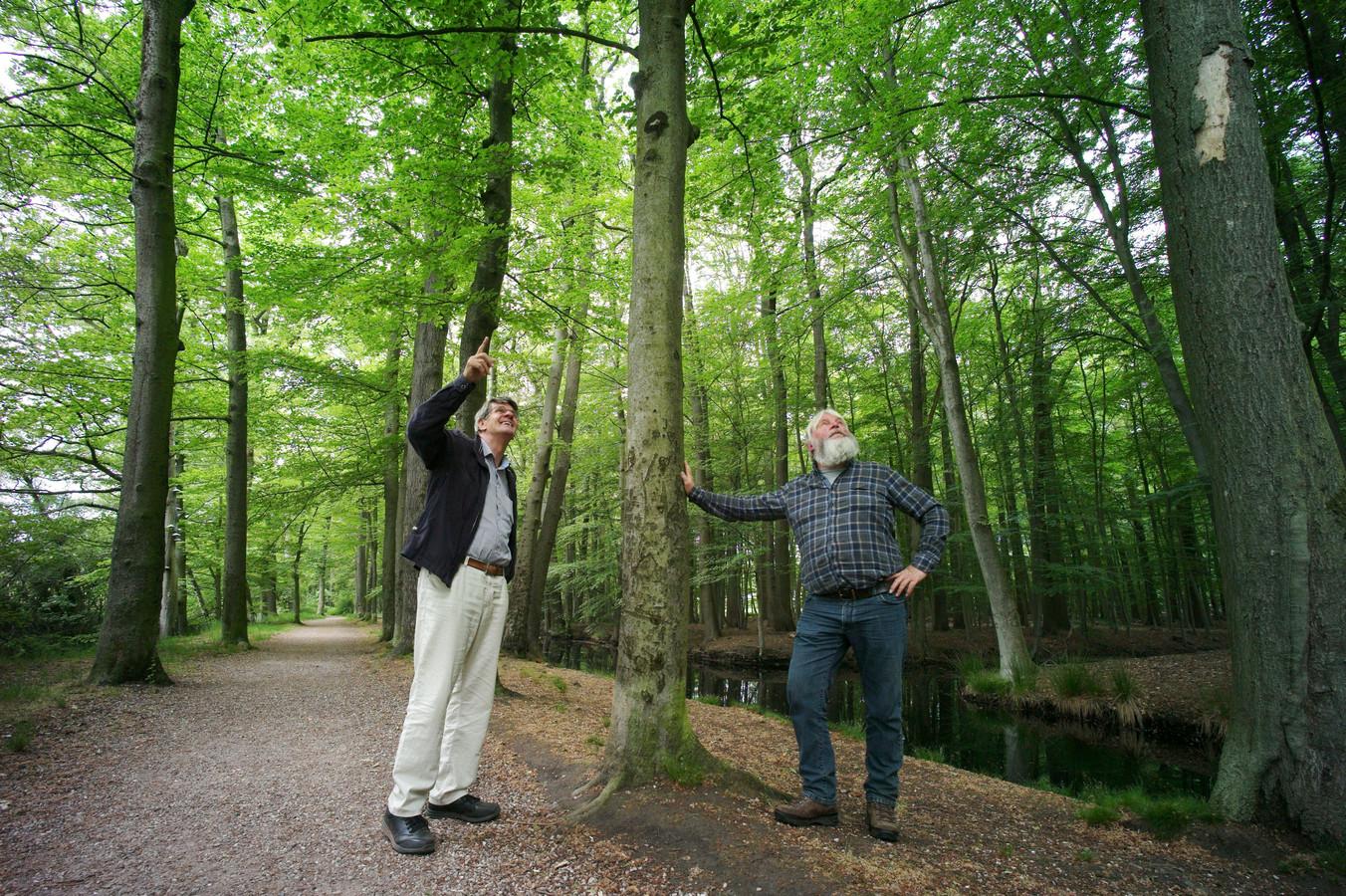 Henk Hekman, voorzitter van de Gelderman Stichting, en parkbeheerder Ton Schopman nemen de schade op in het wandelgebied 'De Eilandjes', waar veel bomen zijn aangetast en dit najaar vervangen gaan worden door nieuwe, gezonde exemplaren.