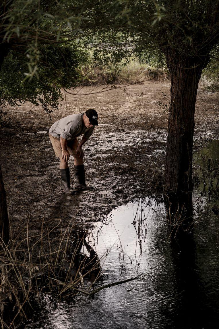 Steven Onzea van Natuurpunt: 'Overal waar je nu zwart water ziet, zou het groen moeten zijn, vol bloemen, kruiden, sprinkhanen, andere insecten en vogels.' Beeld © Eric de Mildt