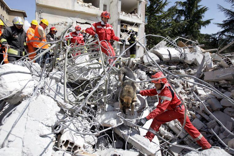 null Beeld © BELGAIMAGE / REUTERS / afp