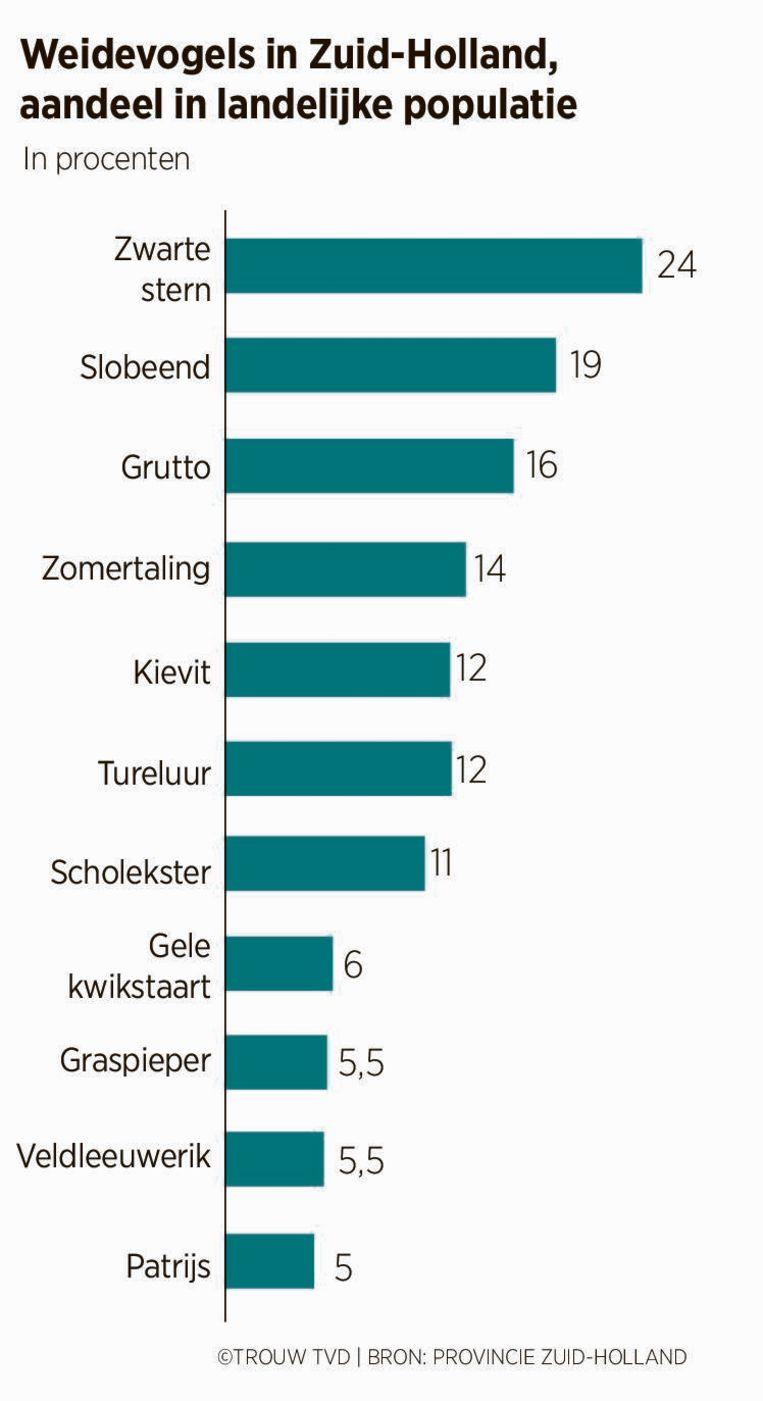Weidevogels in Zuid-Holland, aandeel in landelijke populatie. Beeld Provincie Zuid-Holland
