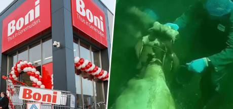 Supermarktketen Boni breekt tóch met beruchte Veluwse slachterij Gosschalk