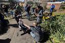 Buurtbewoners in Woensel zijn samen op de eerste lentedag aan de slag in het gezamenlijke speelparkje achter hun tuinen.
