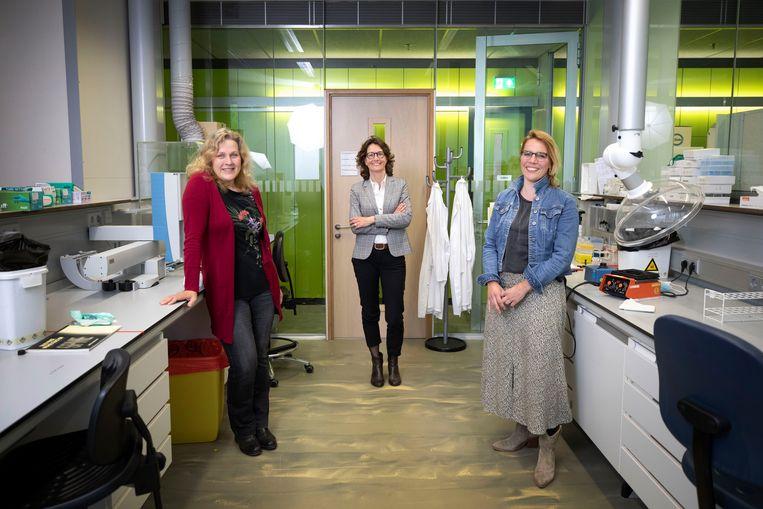 Hoogleraar toxicologie Juliette Legler (l), lector Cyrille Krul (m) en Anne Kienhuis van het RIVM werken aan een revolutionair onderzoek naar een dierproefvrije aanpak. Beeld Werry Crone