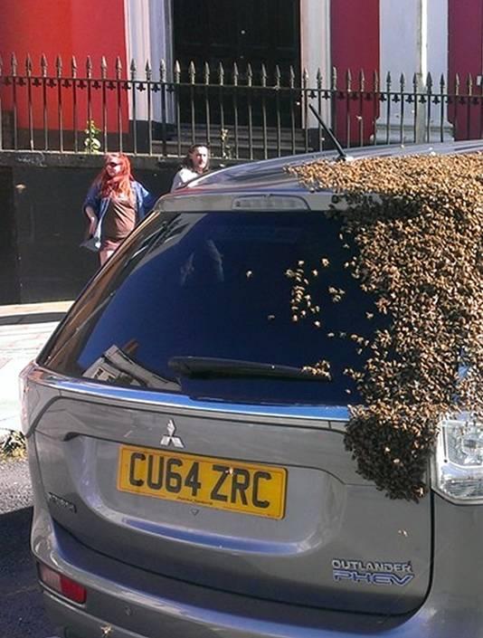 Omstanders maakten foto's van de bijenzwerm