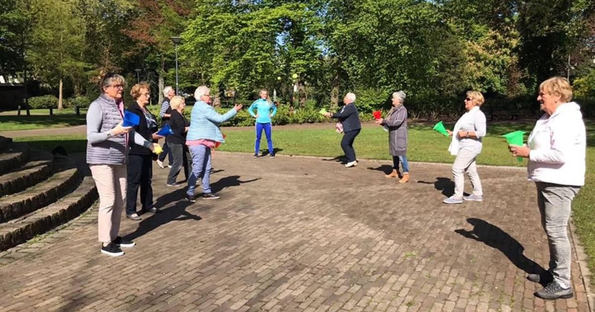 Sport Service houdt Roosendaalse ouderen in beweging   Roosendaal   bndestem.nl