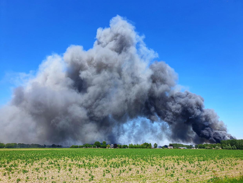 De stalbrand in Nederweert van afgelopen dinsdag. Er kwamen 4.600 varkens om het leven.