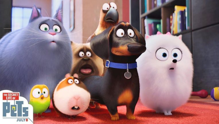 null Beeld The secret life of pets