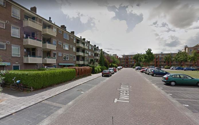 De Tweelingen in Bilthoven