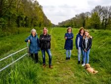 Peperduur onderzoek naar weg waarvoor 2200 bomen moeten wijken komt er, als het aan de VVD ligt