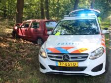 Auto botst bij Ermelo eerst achterop dierenambulance, daarna tegen boom