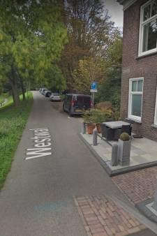 Omwonenden staken verzet tegen wooncomplex dementerenden aan Westwal in Goes