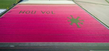 Kunstenaar Willem Hoogeveen uit Emmeloord geëerd na zijn dood: 'Belangrijk dat men hem blijft kennen'