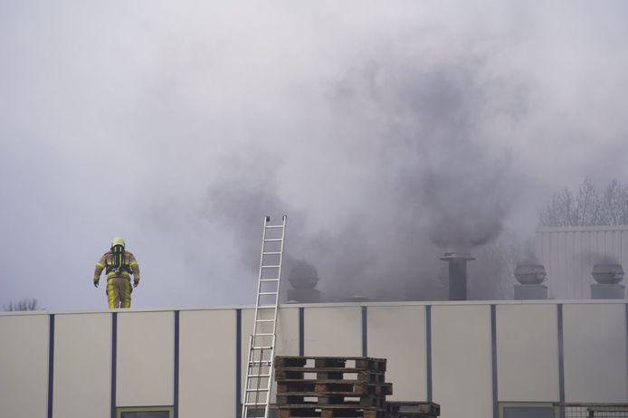 De rookwolken bij het bedrijf in Hasselt zwellen aan, de brandweer heeft het als 'grote brand' aangemerkt.