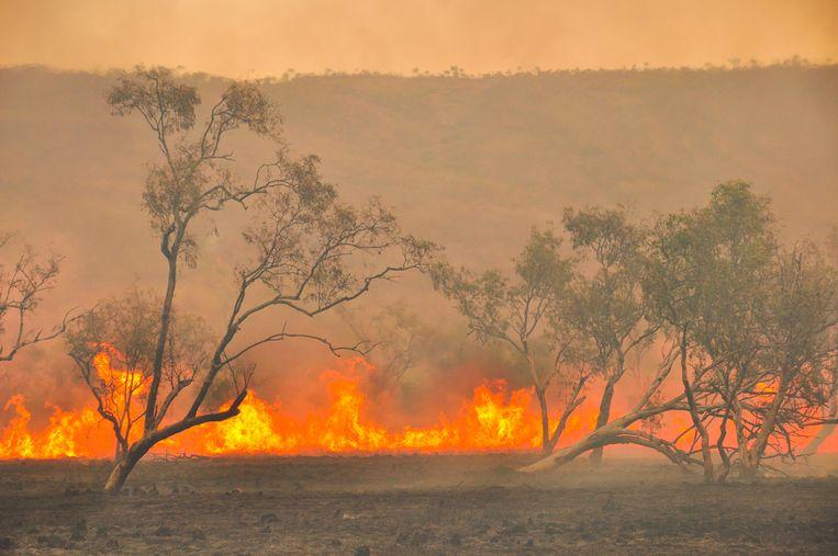 De hoogste afwijkingen werden gemeten in onder andere Australië.