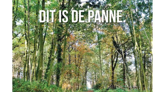 Met campagne 'Dit is De Panne' toont kustgemeente dat er meer is dan strand en zee