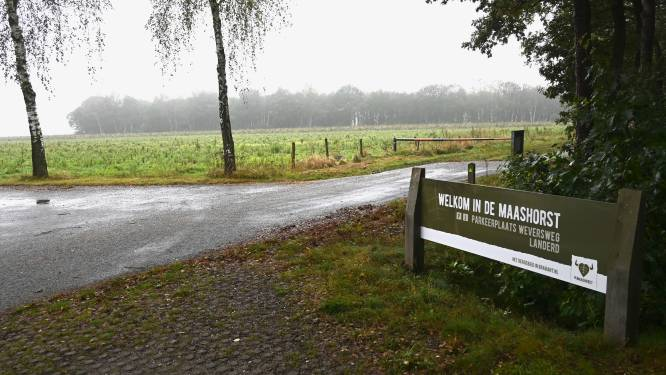 Zestig voetbalvelden nieuwe natuur op De Maashorst