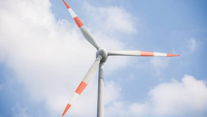 Bosschenaren kunnen deel windmolen Rietvelden kopen, tegenstanders verenigen zich