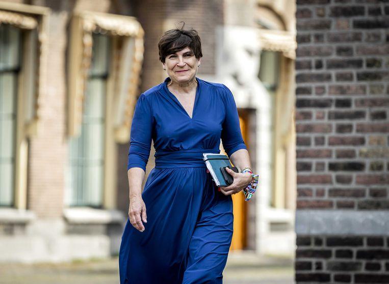 Fractieleider Lilianne Ploumen (PvdA) komt aan voor een gesprek met informateur Mariëtte Hamer. De formatie zit volgens betrokkenen in een complexe fase.  Beeld ANP