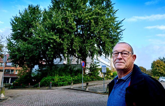 Theo de Bruin bij de geliefde bomen in de Sliedrechtse Wilhelminastraat.