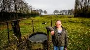 Buurtbewoonster vreest wateroverlast in haar bos als Houthulst industriezone uitbreidt met 5 hectare