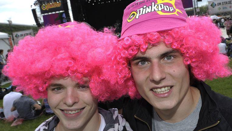 Bezoekers van Pinkpop vorig jaar. Beeld ANP