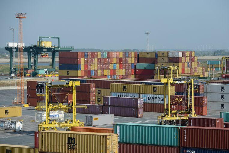 De haven van Antwerpen is eindeloos groot, en van de miljoenen containers die hier binnenkomen, wordt maar een klein deel gecontroleerd. Beeld BELGA