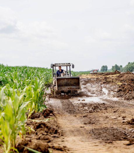 Boerenorganisatie wil ook schadevergoeding voor boeren in Land van Maas en Waal na hoogwater