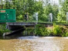 Vissen sterven massaal in Deventer woonwijk: 'Bewoners zelf zijn de oorzaak'