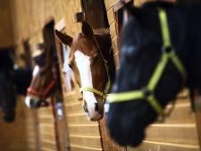 Onderzoek fraude met toppaarden in Zuidoost-Brabant