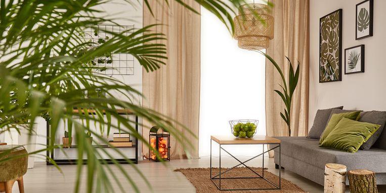 interieurtrend-gekleurde-plafonds.jpg