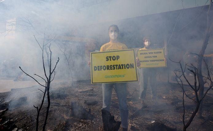 Activisten van Greenpeace protesteren tegen de ontbossing van het Amazonewoud in Wenen.